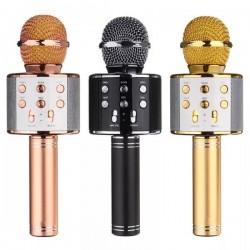Ασύρματο μικρόφωνο DJ/KARAOKE WS-858