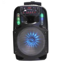Φορητό ηχοσύστημα ES-D-12