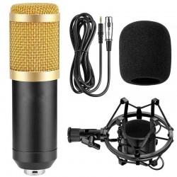 Επαγγελματικό πυκνωτικό μικρόφωνο BM800