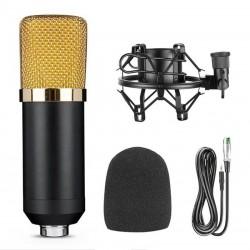 Επαγγελματικό πυκνωτικό μικρόφωνο BM700